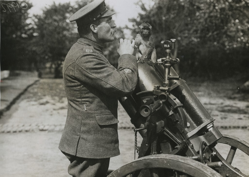 Trench mortar school mascot on a German trench mortar