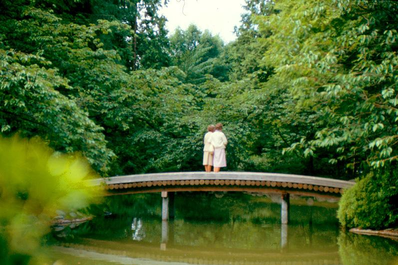 Touring the Nitobe Memorial Garden | Digitization Centre